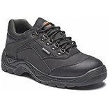 Dickies Norden Safety Shoe Black (Size 10)
