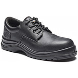 Dickies Armona Safety Shoe Black (Size 8)