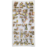 100 Piece Nut Rivet Set