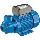 "Clarke BIP1500 1"" Electric Water Pump"