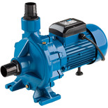 "Clarke ECP20A1 2"" Electric Centrifugal Pump (230V)"