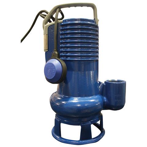 Image of TT Pumps TT Pumps PZ/1086.011 DG Blue Pro Professional Submersible Pump